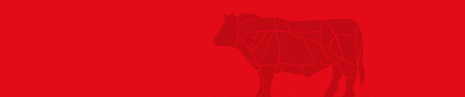 bovino-tagli-carne_baronecarni
